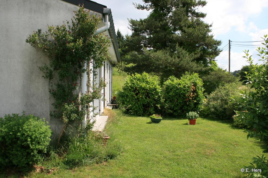 jardin devant le salon